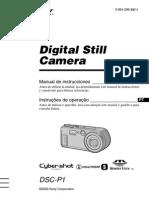 Manual DSC P1