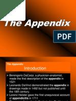 Appendix Risman