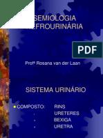 Semio Nefrourinaria