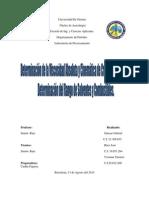 informe N°2. Procesamiento de Hidrocarburo y Lab