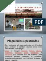 Guía Para La Prevención de Las Intoxicaciones Por Plagcidas
