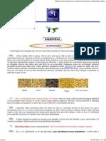 Calopsitas.pdf