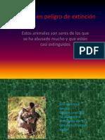 Animales en Peligro de Extincic3b3n