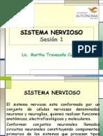 Sesion 1. Sistema Nervioso - Copia