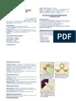 Generalidades de La Pateria Cap 1