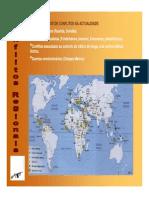 Conflitos Regionais.pdf