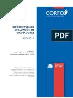 30. Reporte de Incubadoras 2013