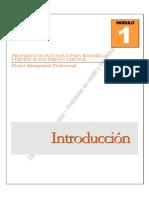 Preparación Intensiva Para Rendir La Certificación PMP en Español v.1.0.0.A