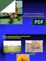 Control Biologico Predatores y Parasitoides