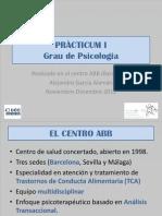 Practicum_1.pptx