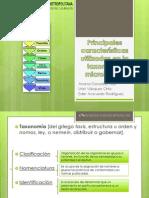 Principales características utilizadas en la taxonomía microbiana..pptx