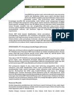 ERP PLN.pdf