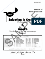 Salvation is Created - Awake