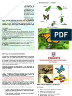 Diptico Mariposa