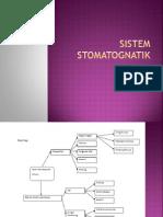 Sistem Stomatognatik