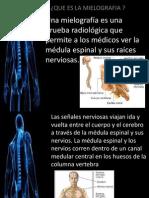 Una Mielografía Es Una Prueba Radiológica Que Permite