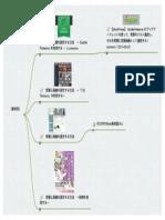 背景画像.pdf