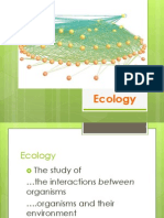 powerpoint ecology