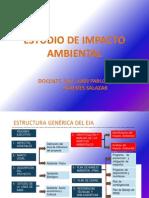 Estudio de Impacto Ambiental 2012
