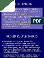 3.Kultur Embrio