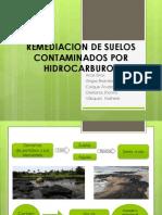 Remediacion de Suelos Contaminados Por Hidrocarburos