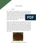 Reaksi Hipoklorit Dengan Lignin (Suyati-Pembuatan Selulosa Asetat Dari Serbuk Gergaji)