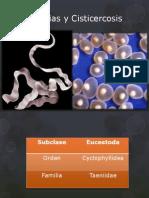 Tenias y Cisticercosis