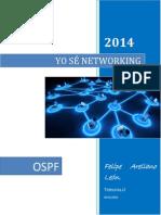 Yo s Networking Ospf Docv3