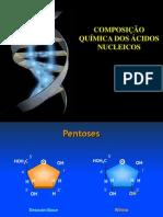 3-Const Quimica Nucleicos