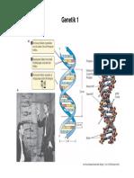 Genetik 1.pdf