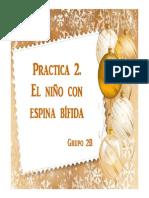 Práctica 2. Espina Bífida. Grupo 2B
