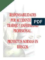 07 Responsablidad Civil en Riesgos Profesionales Minproteccion