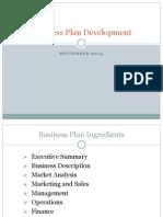 firm expo business plan development