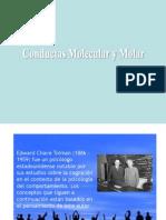 molaridad molecularidad