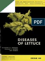 Diseases of Lettuce