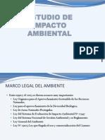 Estudion de Impacto Ambiental