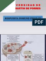IB-12-CHI-RPTA CELULARRespuesta celular.pptx