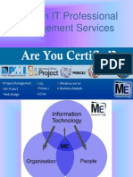 Nigerian IT Professional Management Services