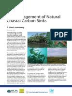Carbon Management Summary