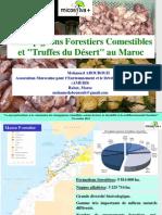 Champignons Comestibles Du Maroc