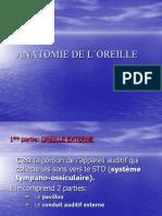 Anatomie Oreille Cn Larynx