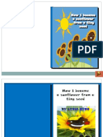 E-book on sunflower