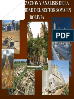 Anal is is Del Sector So Ya en Bolivia