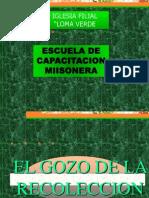 EL GOZO DE LA RECOLECCION.ppt