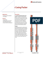 R3 Packer Technical Datasheet