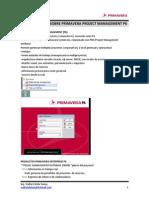 01-Generalidades Sobre Primavera p6