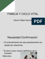 Familia y Ciclo Vital 2011