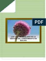 Los Cuatro Adalides de La Gestión del Conocimiento en Bolivia
