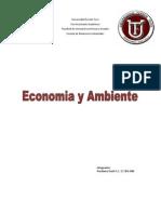 Economia y Ambiente.pdf