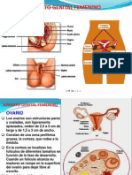 Clase Nº2 Embrio